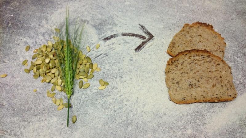 Vom Korn zum Brot beim Handwerksbäcker Agethen